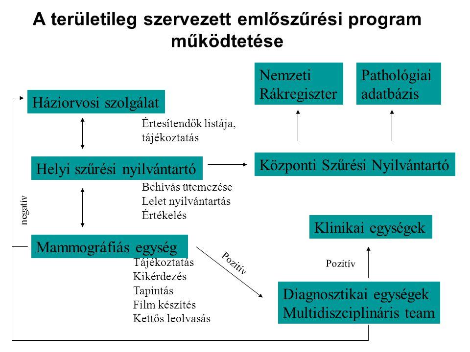 A területileg szervezett emlőszűrési program működtetése Háziorvosi szolgálat Helyi szűrési nyilvántartó Értesítendők listája, tájékoztatás Mammográfi