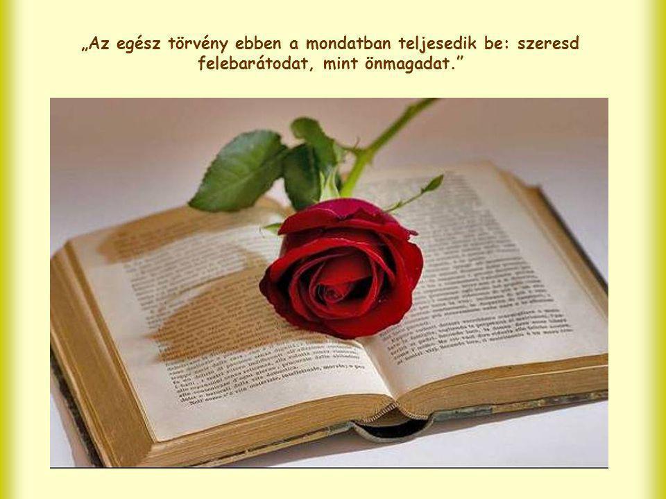 Sőt az egyik – a felebarát iránti szeretet – kifejeződése a másiknak, az Isten iránti szeretetnek. Hiszen Istent szeretni annyit jelent, mint tenni az