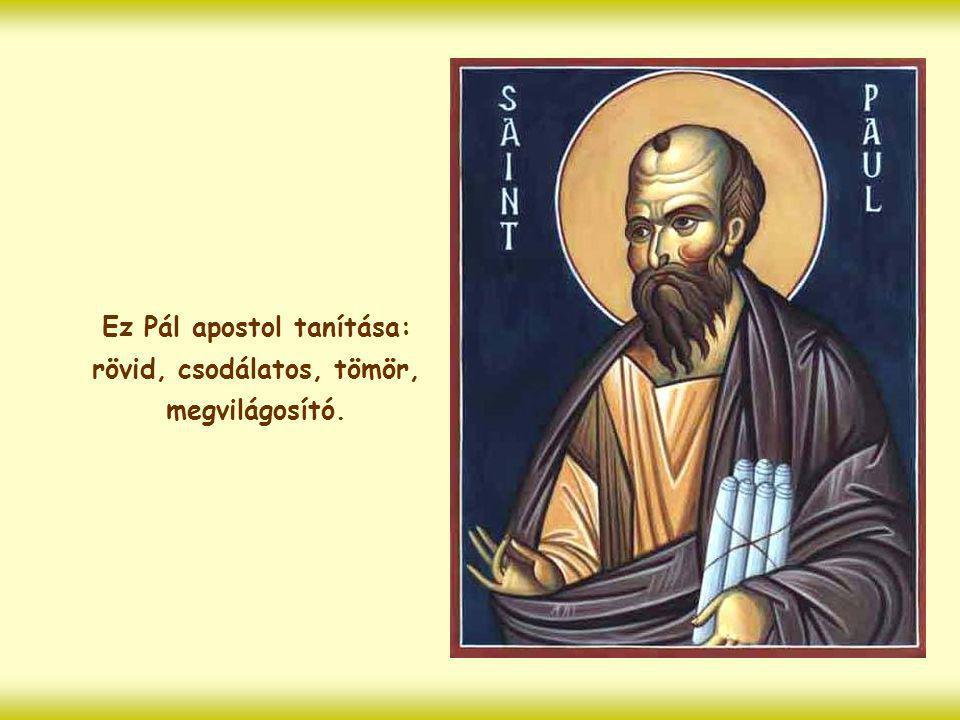 """""""Az egész törvény ebben a mondatban teljesedik be: szeresd felebarátodat, mint önmagadat."""" (Gal 5,14)"""