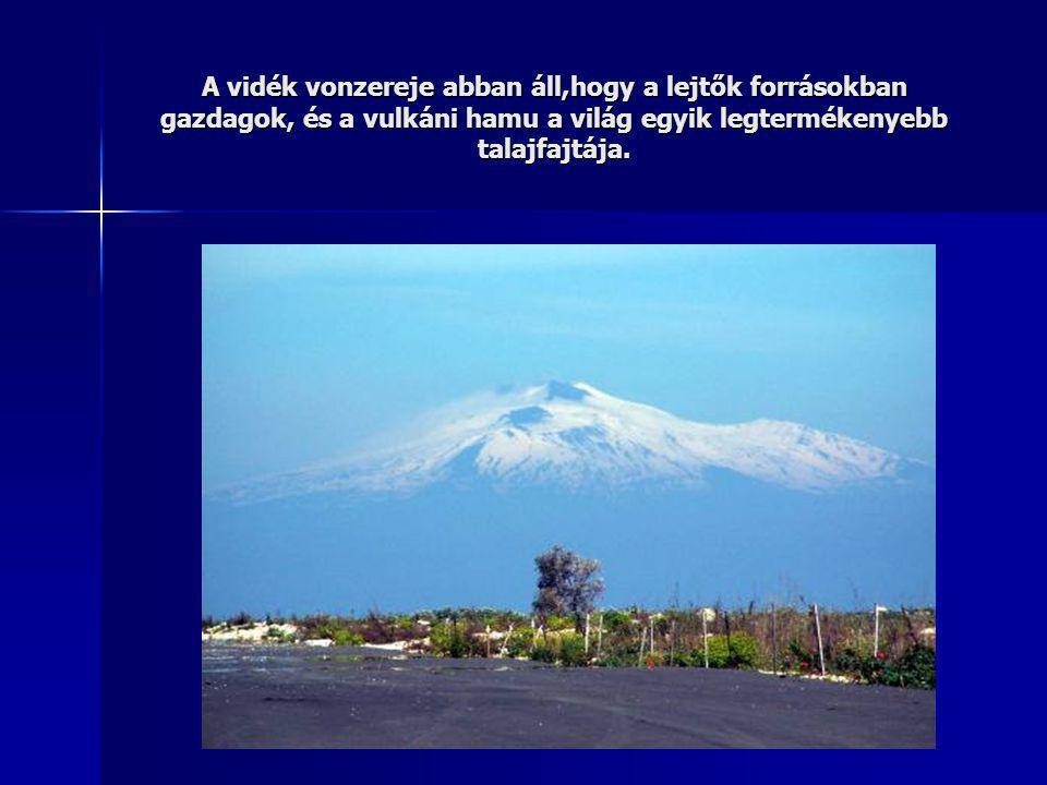 A vidék vonzereje abban áll,hogy a lejtők forrásokban gazdagok, és a vulkáni hamu a világ egyik legtermékenyebb talajfajtája.
