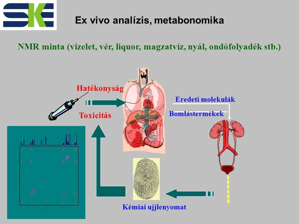 Hatékonyság Toxicitás Eredeti molekulák Bomlástermékek Kémiai ujjlenyomat Ex vivo analízis, metabonomika NMR minta (vizelet, vér, liquor, magzatvíz, nyál, ondófolyadék stb.)