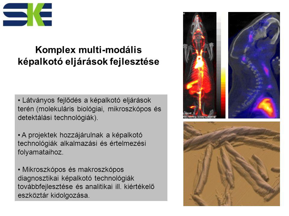 Látványos fejlődés a képalkotó eljárások terén (molekuláris biológiai, mikroszkópos és detektálási technológiák).
