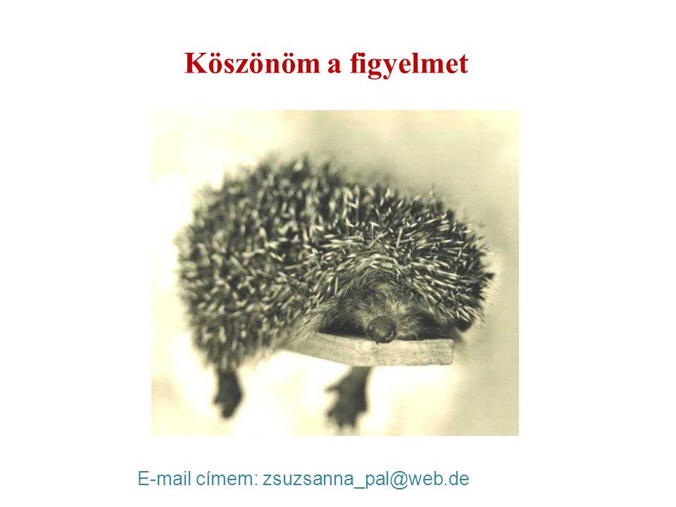 Köszönöm a figyelmet E-mail címem: zsuzsanna_pal@web.de