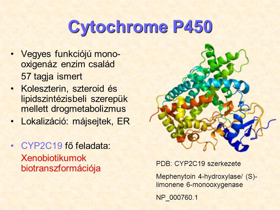CYP2C19 GENETIKÁJA CYP2C19 gén (ENSG00000165841) 10.