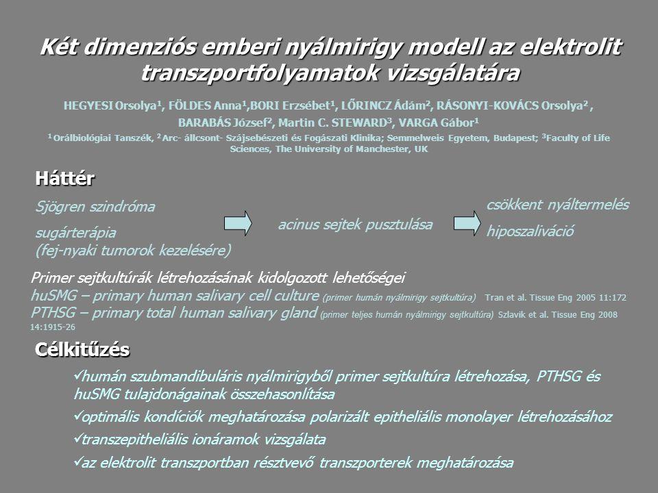 Hepato-STIM medium (BD Biosciences) MEM medium (Sigma) 10%FBS, antibiotikum- antimycotikum oldat (Sigma) Disszociáló puffer: 0,04% tripszin (Gibco) és 0,15mg/ml kollagenáz (Sigma- Aldrich) DMEM-F12 mediumban (Gibco) Transwell Clear (Corning Costar) Membrán ellenállás (TEER) mérés: EVOM (World Precision Instruments) Warner két csatornás Ussing kamra (U-2500, Warner Instruments Co.) Sejttenyésztés – primer kultúra Nyálmirigy minták RNS izolálás: TRI Reagent (Sigma) Plasztik edényről and Transwell Clearmembránról RNS izolálás: Nucleospin RNA II.