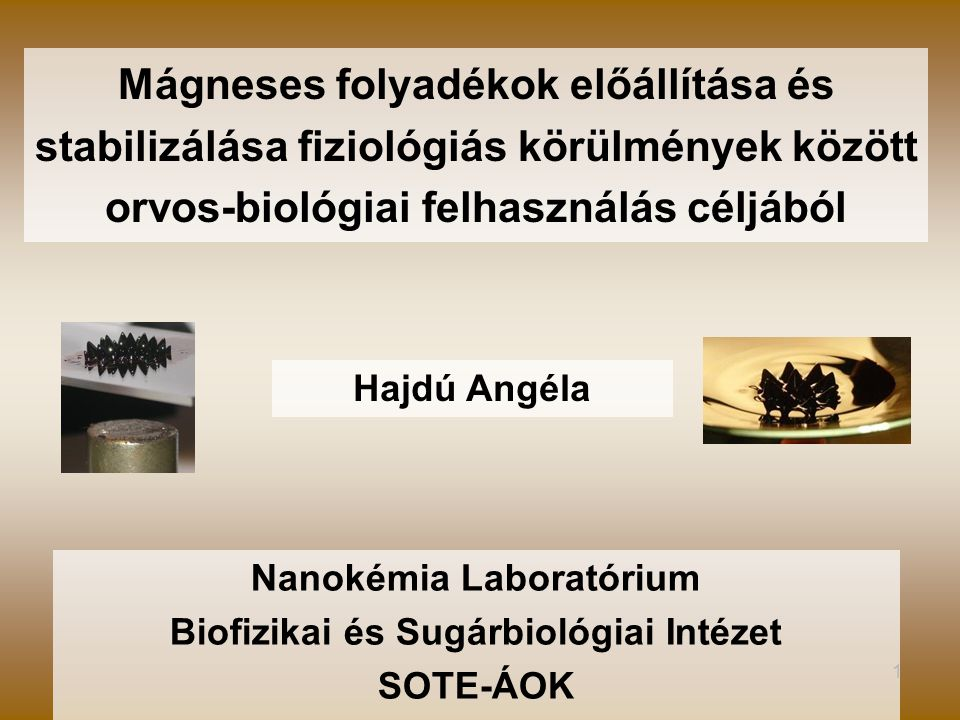 1 Mágneses folyadékok előállítása és stabilizálása fiziológiás körülmények között orvos-biológiai felhasználás céljából Hajdú Angéla Nanokémia Laboratórium Biofizikai és Sugárbiológiai Intézet SOTE-ÁOK