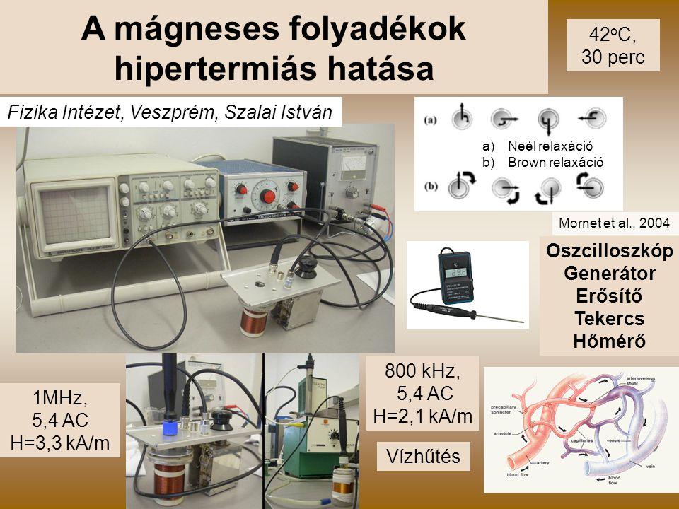 12 A mágneses folyadékok hipertermiás hatása 1MHz, 5,4 AC H=3,3 kA/m 800 kHz, 5,4 AC H=2,1 kA/m Vízhűtés Oszcilloszkóp Generátor Erősítő Tekercs Hőmér