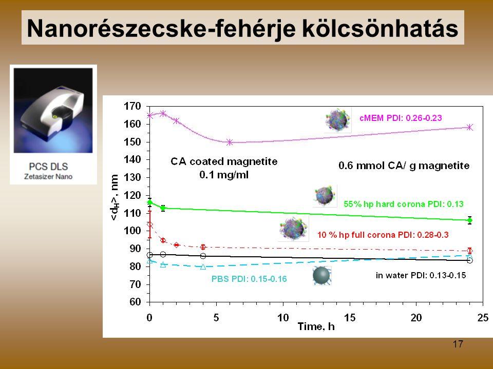 17 Nanorészecske-fehérje kölcsönhatás