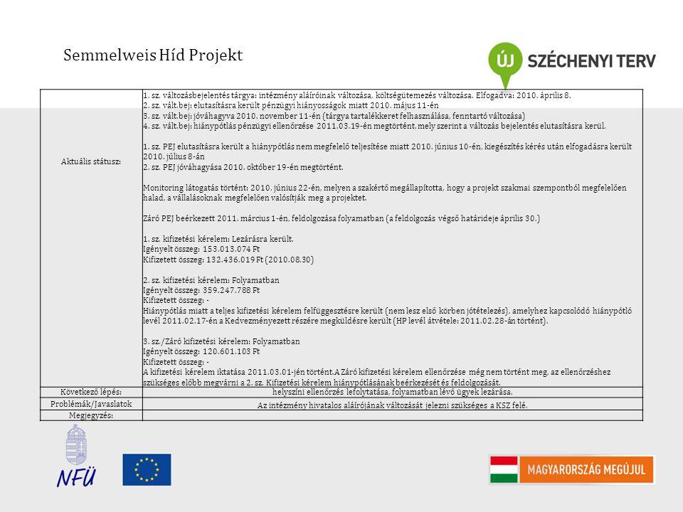 Semmelweis Híd Projekt Aktuális státusz: 1. sz.