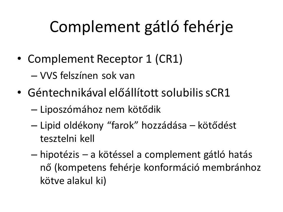 Complement gátló fehérje Complement Receptor 1 (CR1) – VVS felszínen sok van Géntechnikával előállított solubilis sCR1 – Liposzómához nem kötődik – Lipid oldékony farok hozzádása – kötődést tesztelni kell – hipotézis – a kötéssel a complement gátló hatás nő (kompetens fehérje konformáció membránhoz kötve alakul ki)
