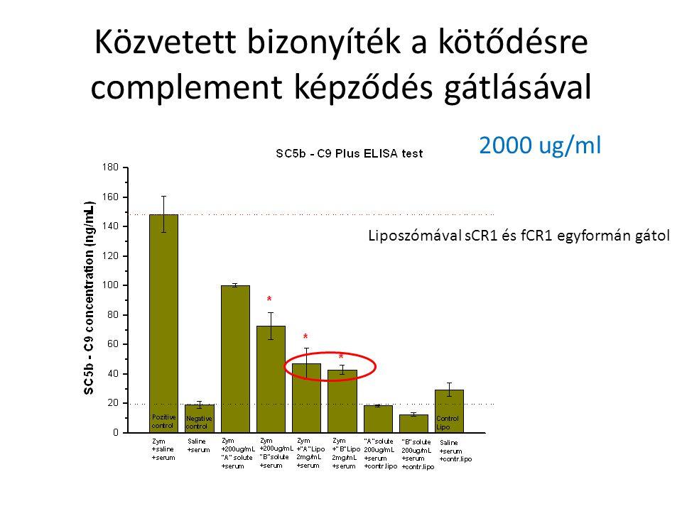 Közvetett bizonyíték a kötődésre complement képződés gátlásával 2000 ug/ml Liposzómával sCR1 és fCR1 egyformán gátol