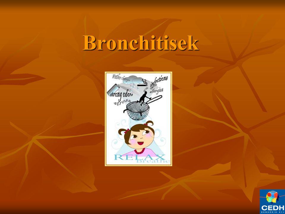 Bronchitisek