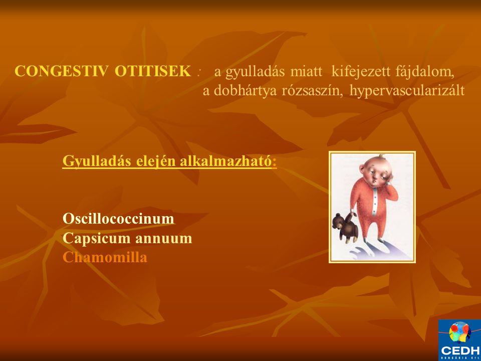 CONGESTIV OTITISEK : a gyulladás miatt kifejezett fájdalom, a dobhártya rózsaszín, hypervascularizált Gyulladás elején alkalmazható: Oscillococcinum Capsicum annuum Chamomilla