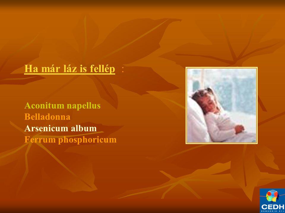 Ha már láz is fellép : Aconitum napellus Belladonna Arsenicum album Ferrum phosphoricum