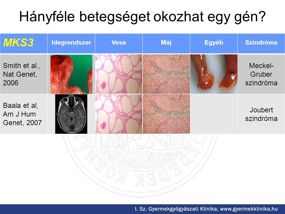 MKS3 IdegrendszerVeseMájEgyébSzindróma Smith et al., Nat Genet, 2006 Meckel- Gruber szindróma Baala et al, Am J Hum Genet, 2007 Joubert szindróma Hányféle betegséget okozhat egy gén?