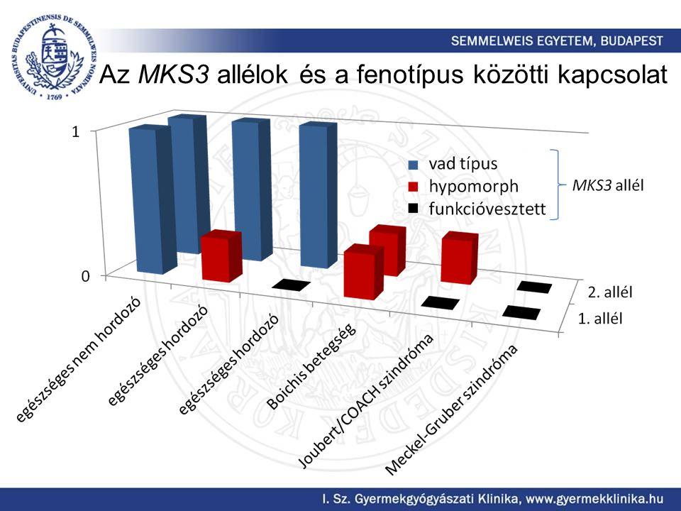 Az MKS3 allélok és a fenotípus közötti kapcsolat
