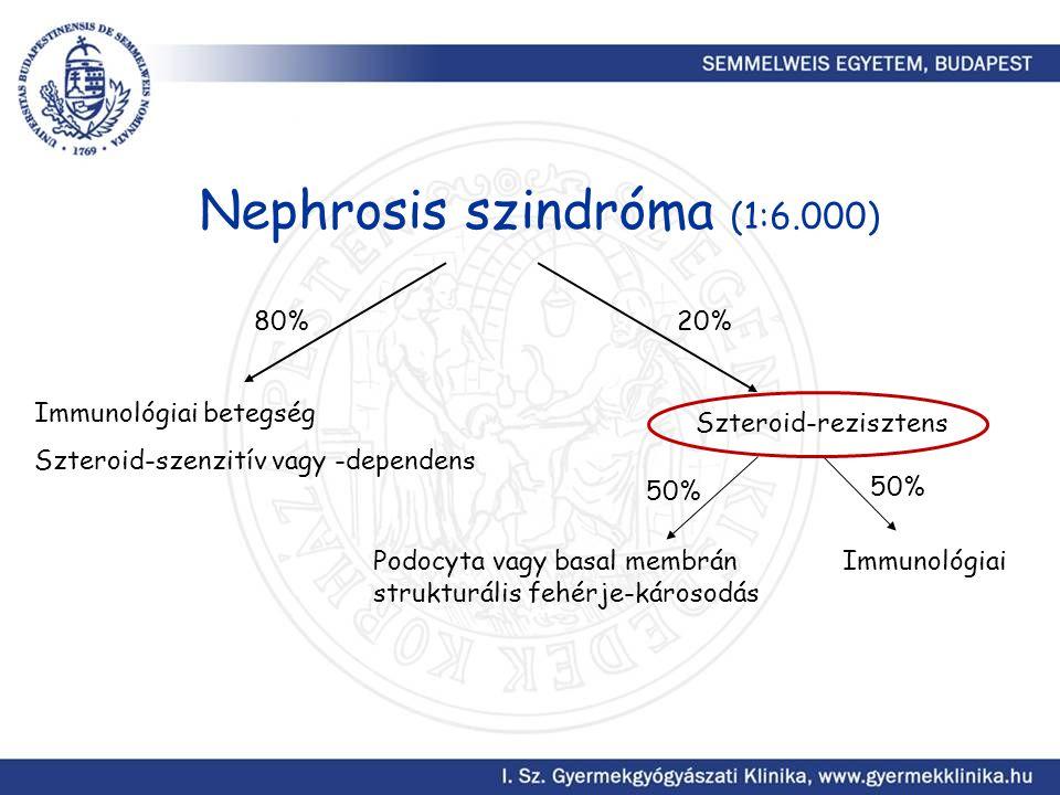 Nephrosis szindróma (1:6.000) Immunológiai betegség Szteroid-szenzitív vagy -dependens Szteroid-rezisztens 20%80% Podocyta vagy basal membrán strukturális fehérje-károsodás Immunológiai 50%