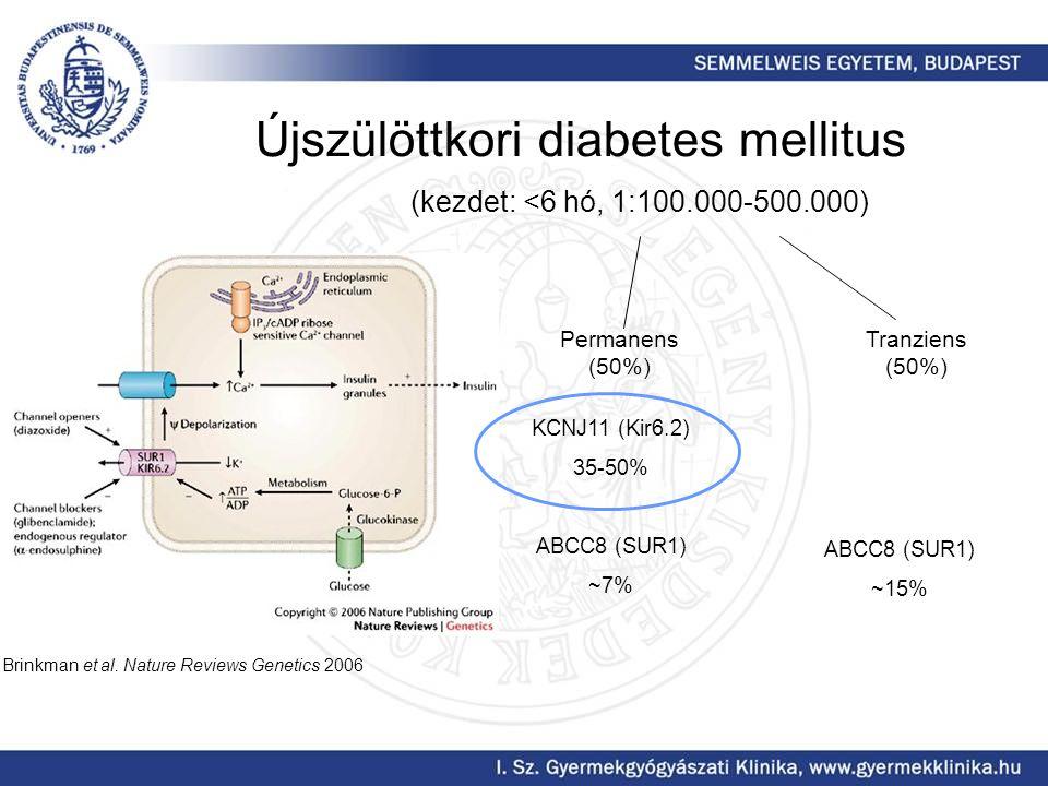Újszülöttkori diabetes mellitus (kezdet: <6 hó, 1:100.000-500.000) Permanens (50%) Tranziens (50%) KCNJ11 (Kir6.2) 35-50% ABCC8 (SUR1) ~7% Brinkman et