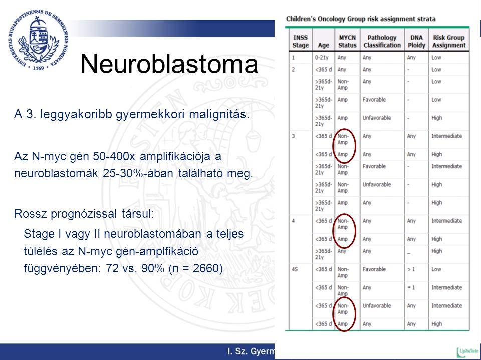 Neuroblastoma A 3. leggyakoribb gyermekkori malignitás. Az N-myc gén 50-400x amplifikációja a neuroblastomák 25-30%-ában található meg. Rossz prognózi