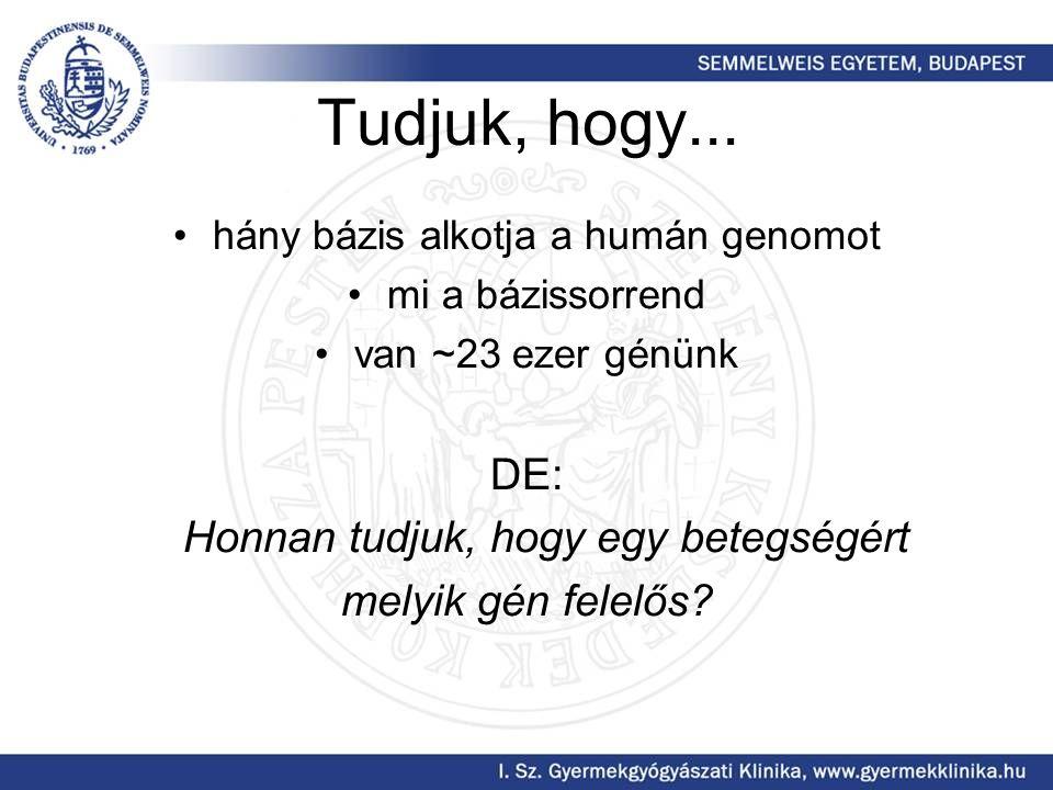 Tudjuk, hogy... hány bázis alkotja a humán genomot mi a bázissorrend van ~23 ezer génünk DE: Honnan tudjuk, hogy egy betegségért melyik gén felelős?