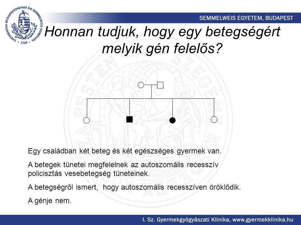A csilló, mint a sejtosztódás iránytűje működik Hibás működése esetén nem tubulus képződik, hanem ciszta Hildebrandt F et al.