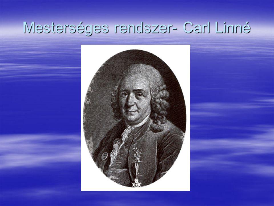 Mesterséges rendszer- Carl Linné