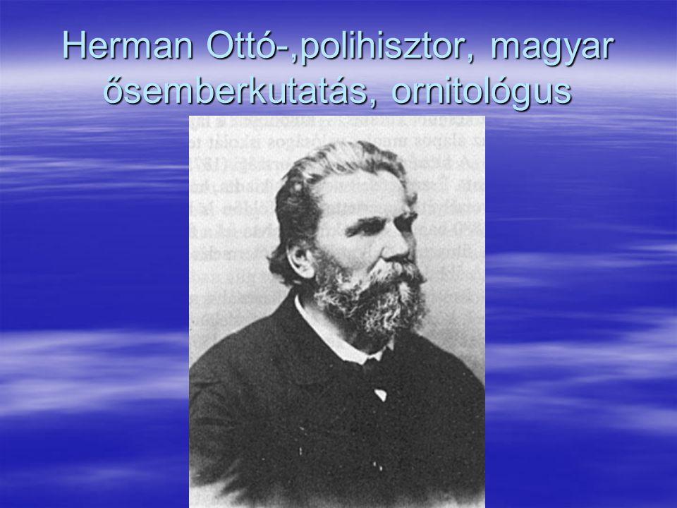 Herman Ottó-,polihisztor, magyar ősemberkutatás, ornitológus