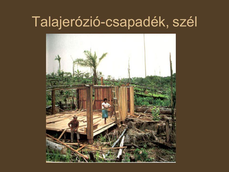 Talajerózió-csapadék, szél