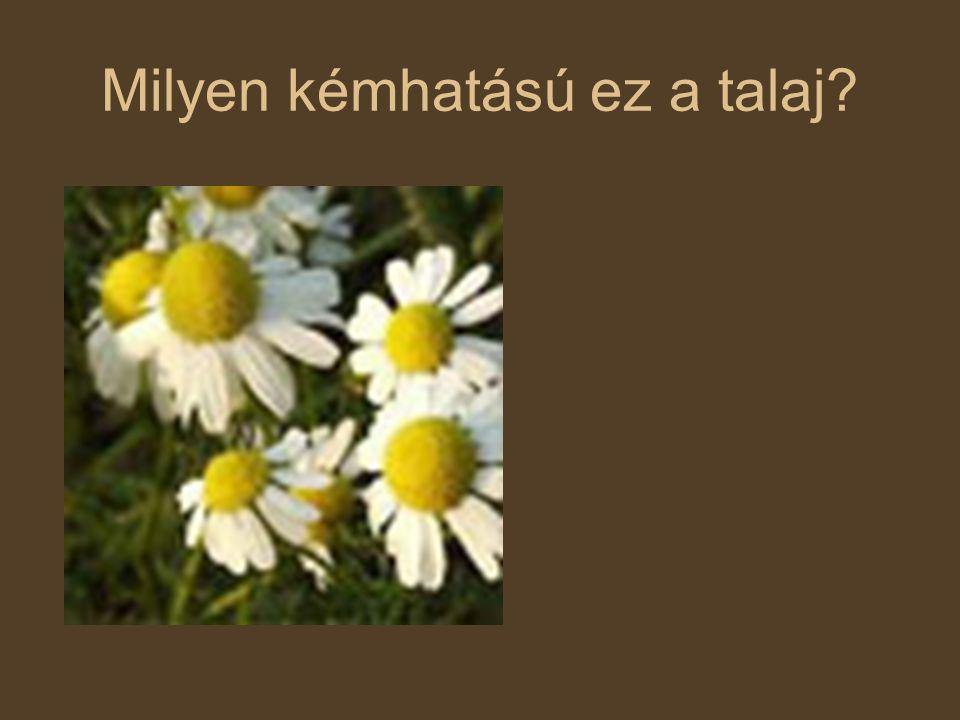 Talajvédő növénytermesztés Sáncolás Vetésforgó Megfelelő öntözés Erdősávok telepítése Biológiai talajvédelem