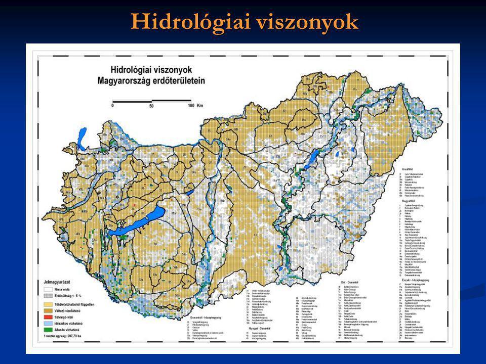 Hidrológiai viszonyok