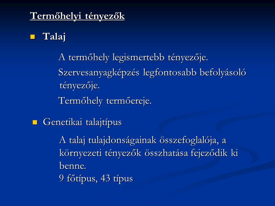 Termőhelyi tényezők Talaj Talaj A termőhely legismertebb tényezője. Szervesanyagképzés legfontosabb befolyásoló tényezője. Termőhely termőereje. Genet