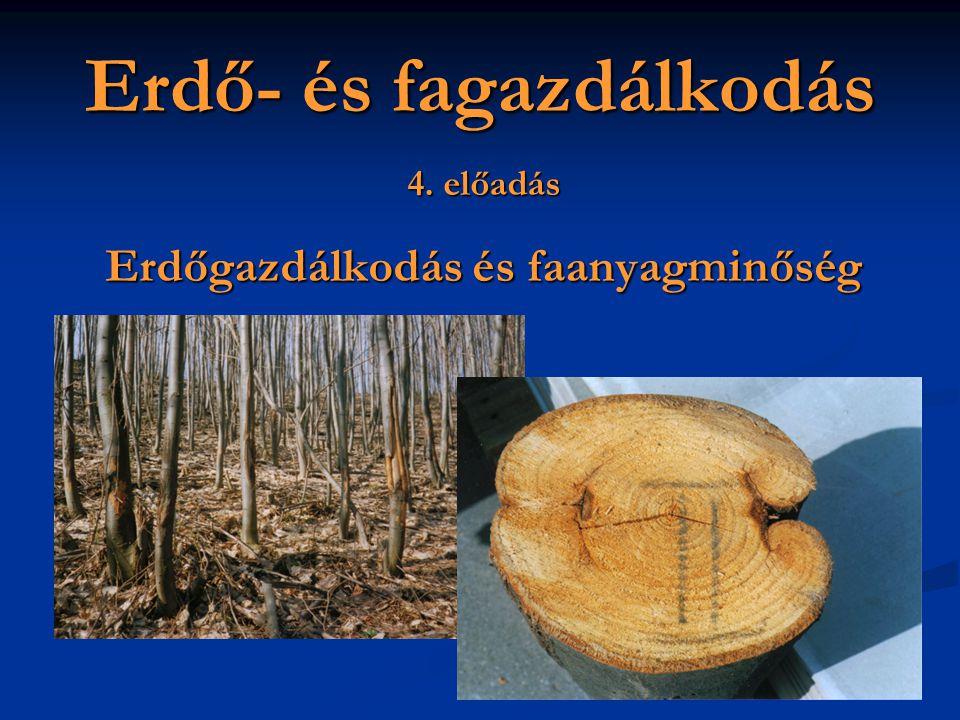 Erdő- és fagazdálkodás 4. előadás Erdőgazdálkodás és faanyagminőség