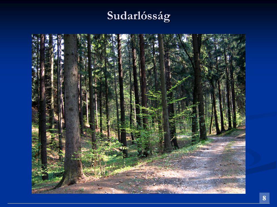 Terpeszesség A terpeszesség (tővastagodás) a hengeres fa tőrészének erőteljes olyan megvastagodása, amikor a tőrész alsó bütüjének átmérője a vágáslap fölött 1 m magasságban mért átmérőnek legalább 1,2-szerese.A terpeszesség (tővastagodás) a hengeres fa tőrészének erőteljes olyan megvastagodása, amikor a tőrész alsó bütüjének átmérője a vágáslap fölött 1 m magasságban mért átmérőnek legalább 1,2-szerese.