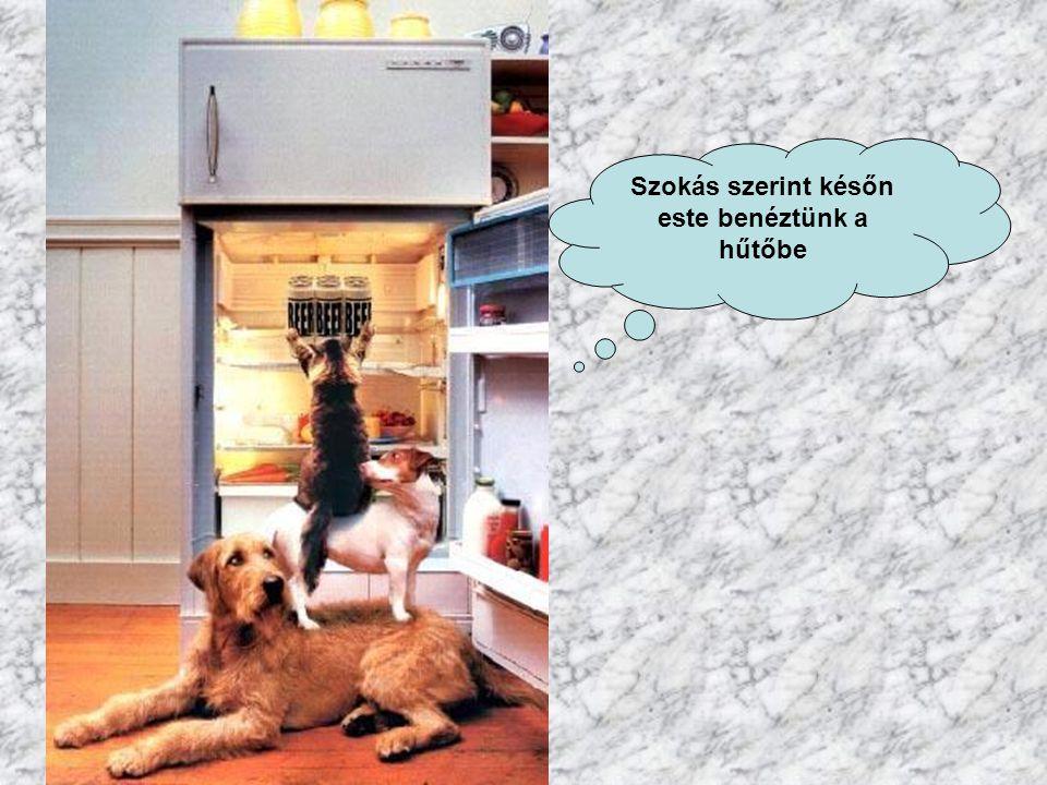 Szokás szerint későn este benéztünk a hűtőbe