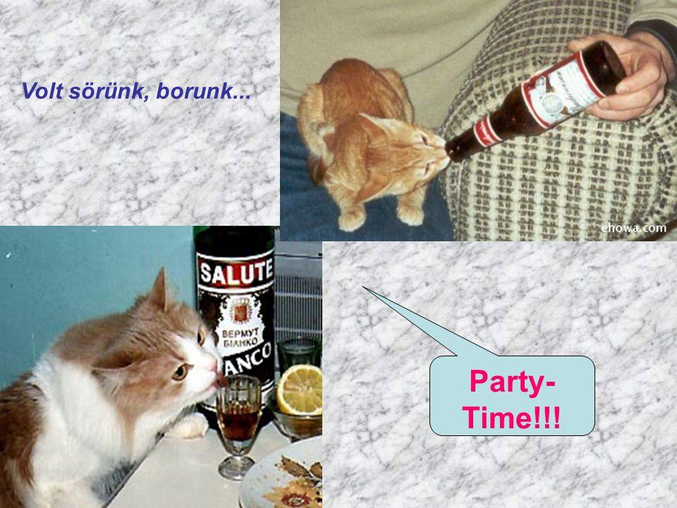Volt sörünk, borunk... Party- Time!!!