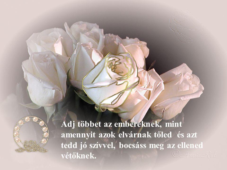 Szeress szívből, szeress igazán. Múlnak a percek, múlnak az örömök, elmúlik minden csak a szeretet örök.