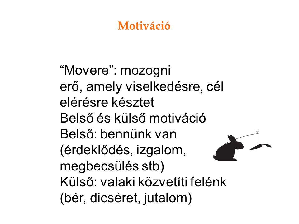 Motiváció Movere : mozogni erő, amely viselkedésre, cél elérésre késztet Belső és külső motiváció Belső: bennünk van (érdeklődés, izgalom, megbecsülés stb) Külső: valaki közvetíti felénk (bér, dicséret, jutalom)
