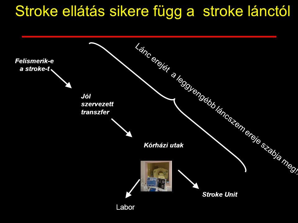 Felismerik-e a stroke-t Kórházi utak Stroke Unit Jól szervezett transzfer Stroke ellátás sikere függ a stroke lánctól Lánc erejét a leggyengébb láncsz