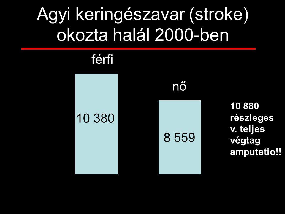 8 559 férfi nő 10 380 Agyi keringészavar (stroke) okozta halál 2000-ben 10 880 részleges v. teljes végtag amputatio!!