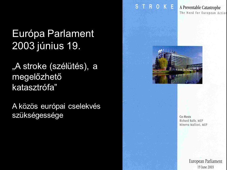 """Európa Parlament 2003 június 19. """"A stroke (szélütés), a megelőzhető katasztrófa"""" A közös európai cselekvés szükségessége"""
