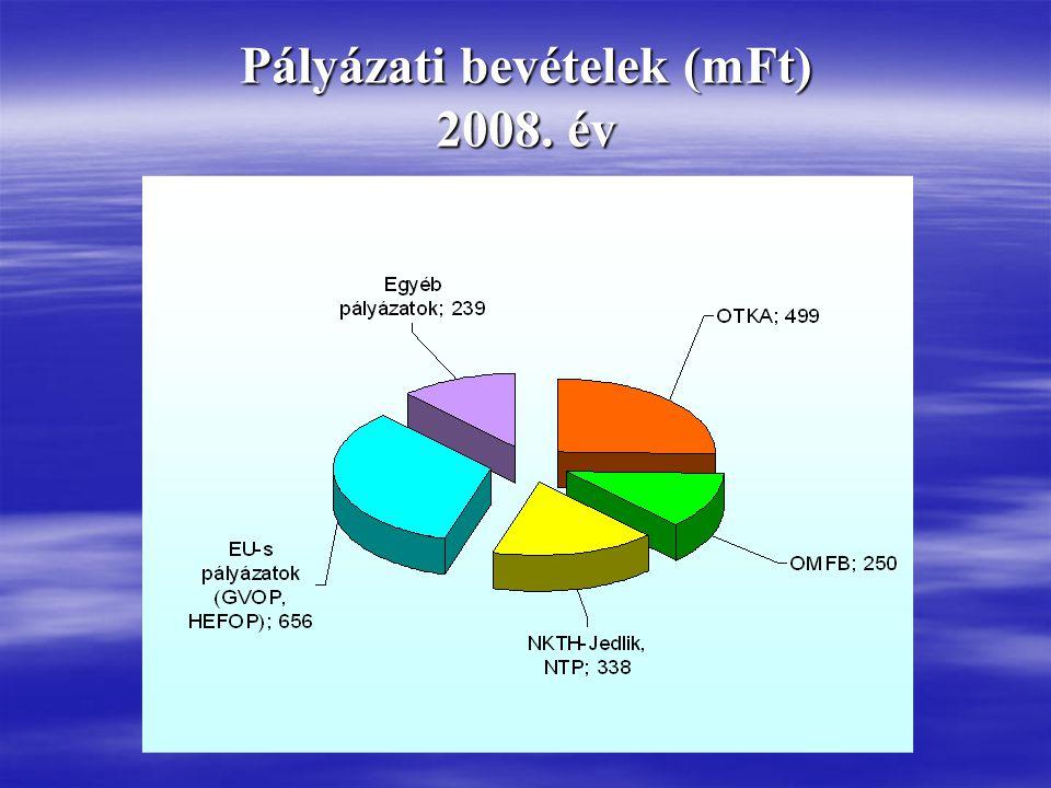 Pályázati bevételek (mFt) 2008. év