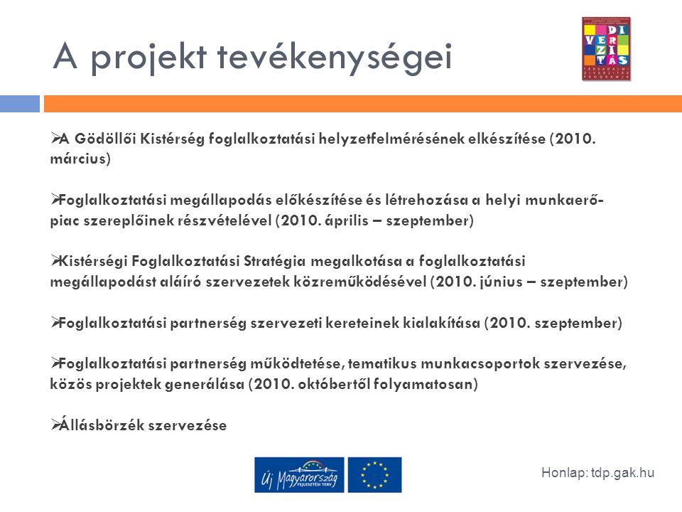 A projekt tevékenységei Honlap: tdp.gak.hu  A Gödöllői Kistérség foglalkoztatási helyzetfelmérésének elkészítése (2010.