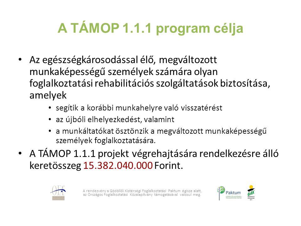 A TÁMOP 1.1.1 program célja Az egészségkárosodással élő, megváltozott munkaképességű személyek számára olyan foglalkoztatási rehabilitációs szolgáltat