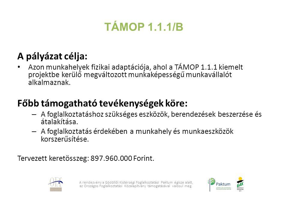 TÁMOP 1.1.1/B A pályázat célja: Azon munkahelyek fizikai adaptációja, ahol a TÁMOP 1.1.1 kiemelt projektbe kerülő megváltozott munkaképességű munkavál