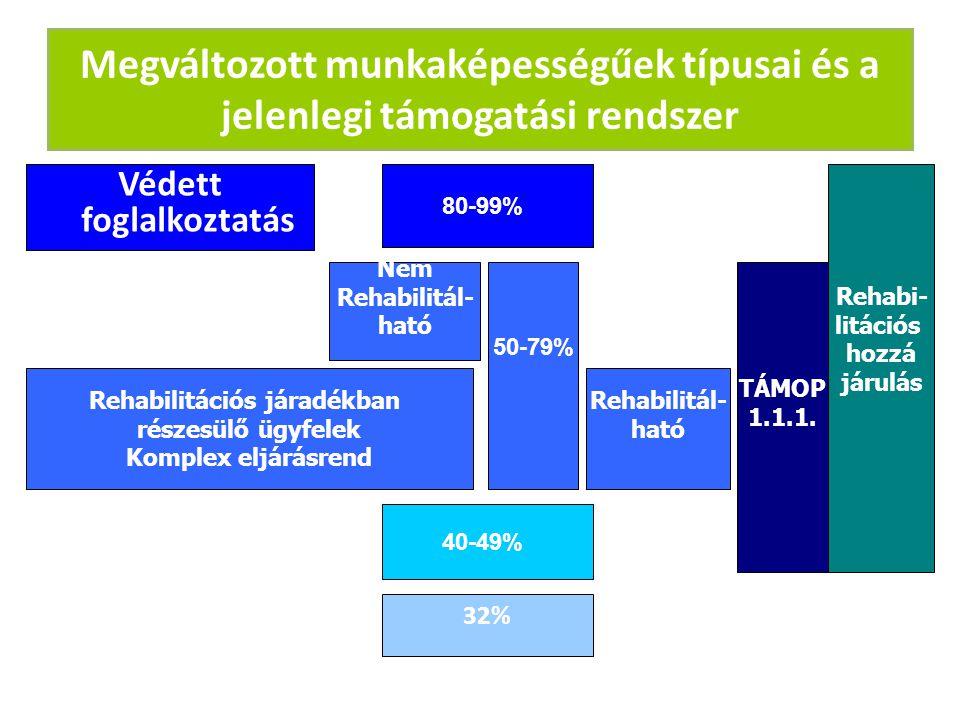 Védett foglalkoztatás Rehabilitációs járadékban részesülő ügyfelek Komplex eljárásrend 80-99% 50-79% 40-49% 32% TÁMOP 1.1.1. Rehabi- litációs hozzá já