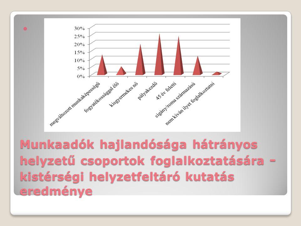 Munkaadók hajlandósága hátrányos helyzetű csoportok foglalkoztatására - kistérségi helyzetfeltáró kutatás eredménye