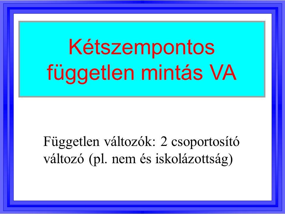 Kétszempontos független mintás VA Független változók: 2 csoportosító változó (pl. nem és iskolázottság)