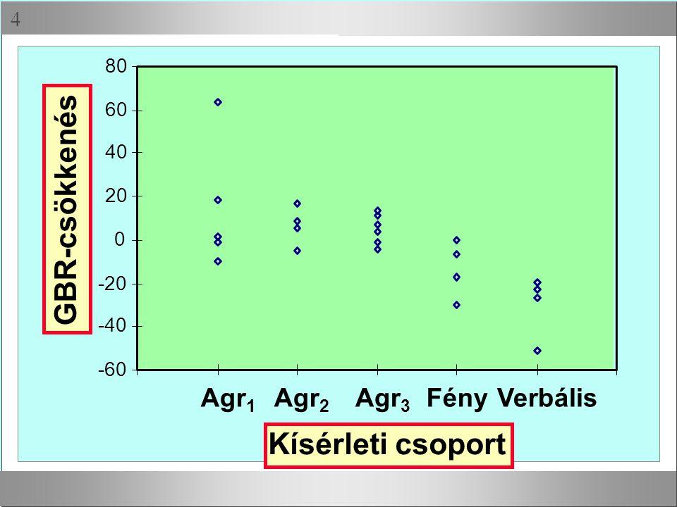  -60 -40 -20 0 20 40 60 80 GBR-csökkenés Agr 1 Agr 2 Agr 3 FényVerbális Kísérleti csoport