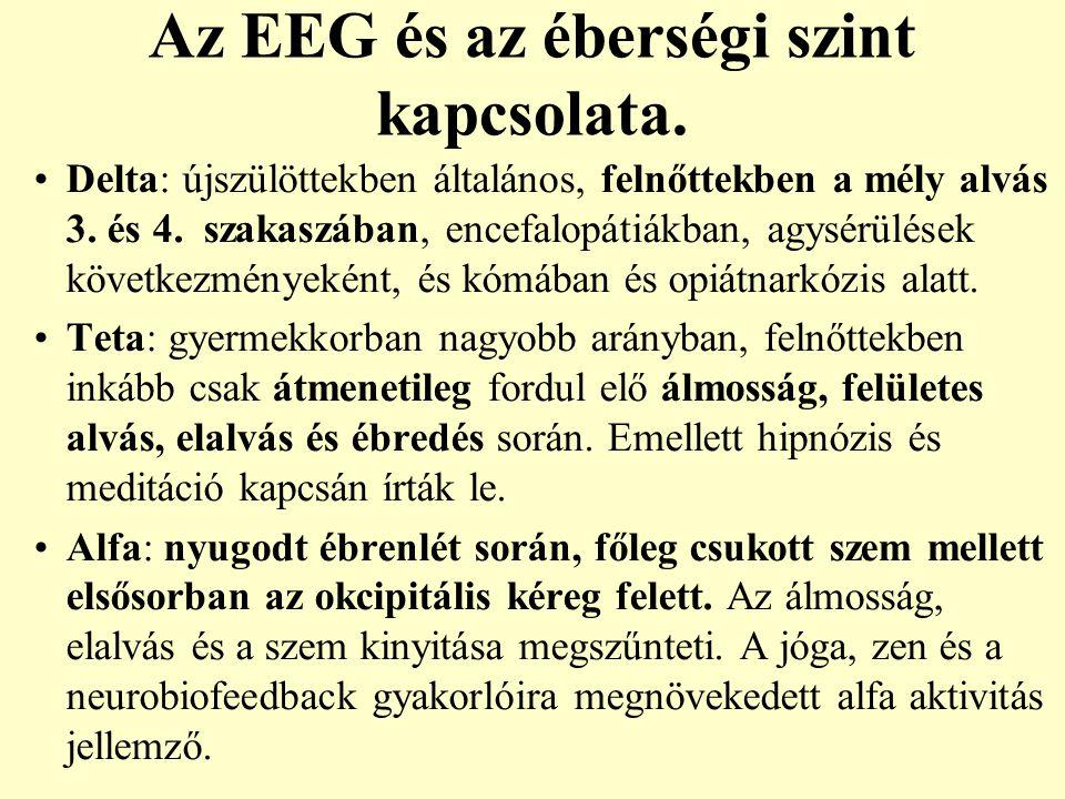 Az EEG és az éberségi szint kapcsolata. Delta: újszülöttekben általános, felnőttekben a mély alvás 3. és 4. szakaszában, encefalopátiákban, agysérülés