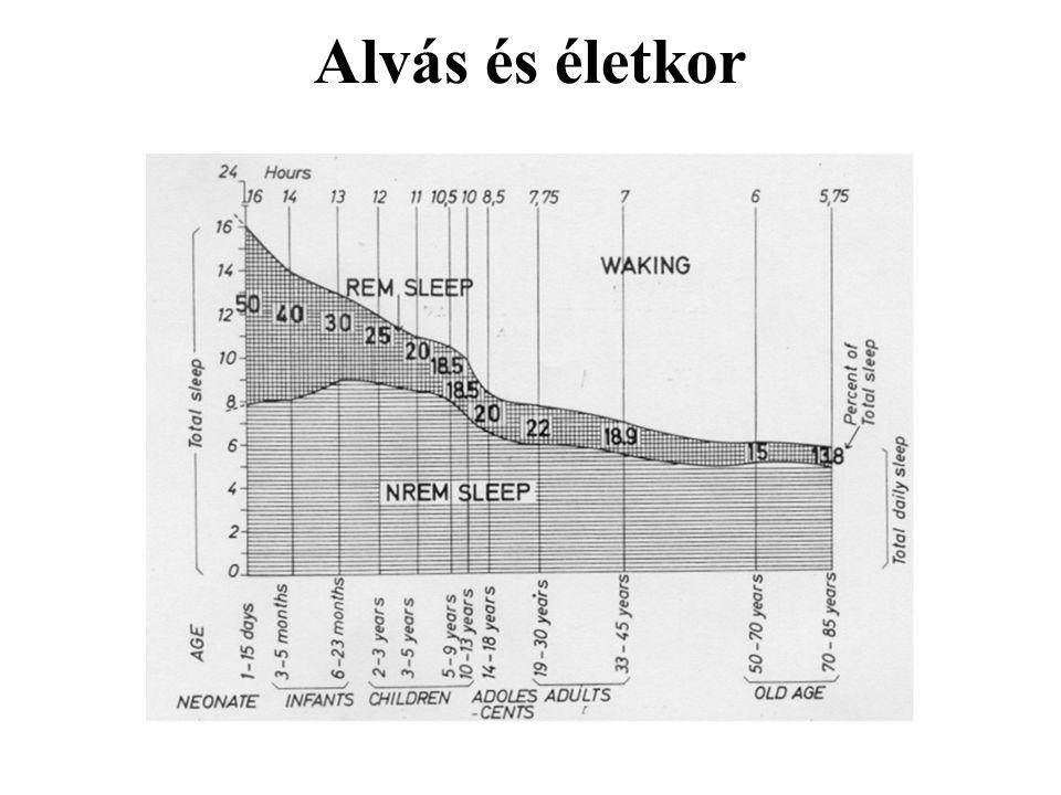 Alvás és életkor